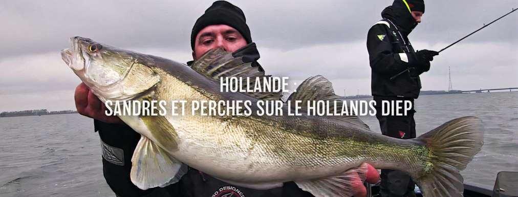 Hollande : sandres et perches sur le Hollands diep